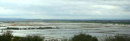 Panorama across West Sedgemoor from Red Hill Nov 2012