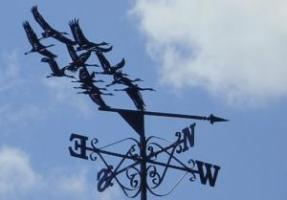 Weathervane photo with cranes