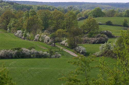 Brandenburg countryside in the spring