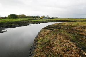 Wetland creation works in progress